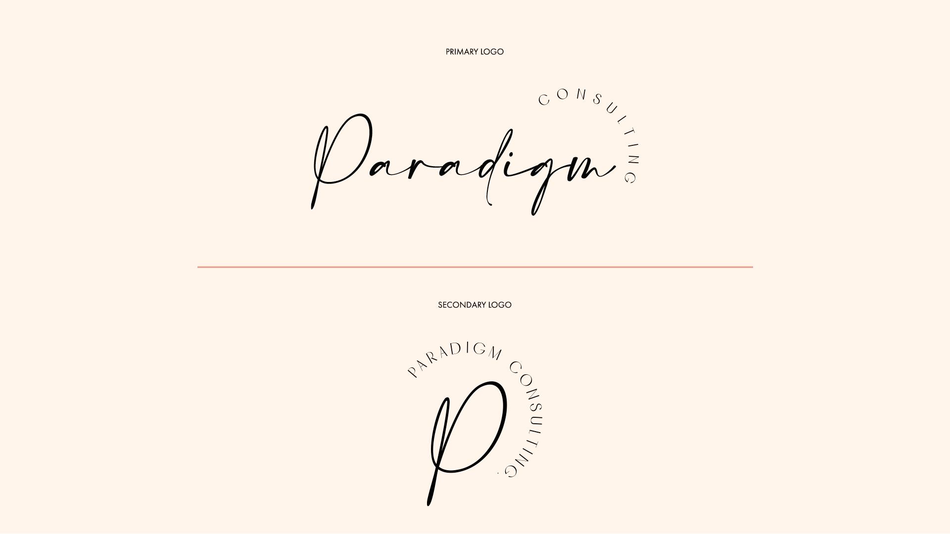 ANONM-Website--Paradigm-Consulting_11